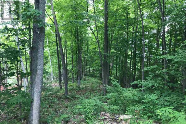 Peninsula Lot Applewood Ln  South Frontenac Ontario recreational for sale